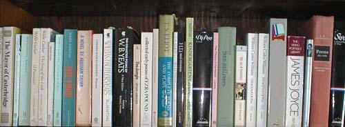row_of_books1