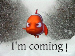 Nemo Meme #1