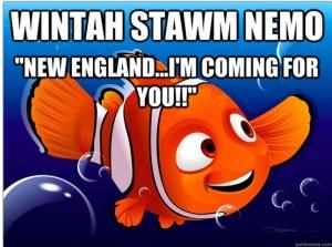 Nemo Meme #4