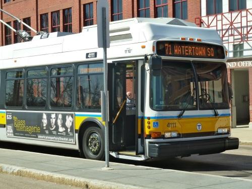 71 Bus